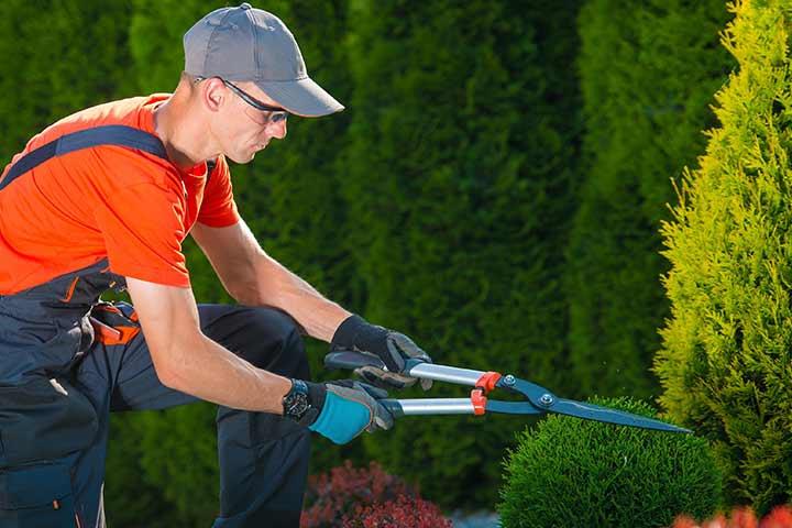 Van der Bent Garden & Woodcreations uit Witharen