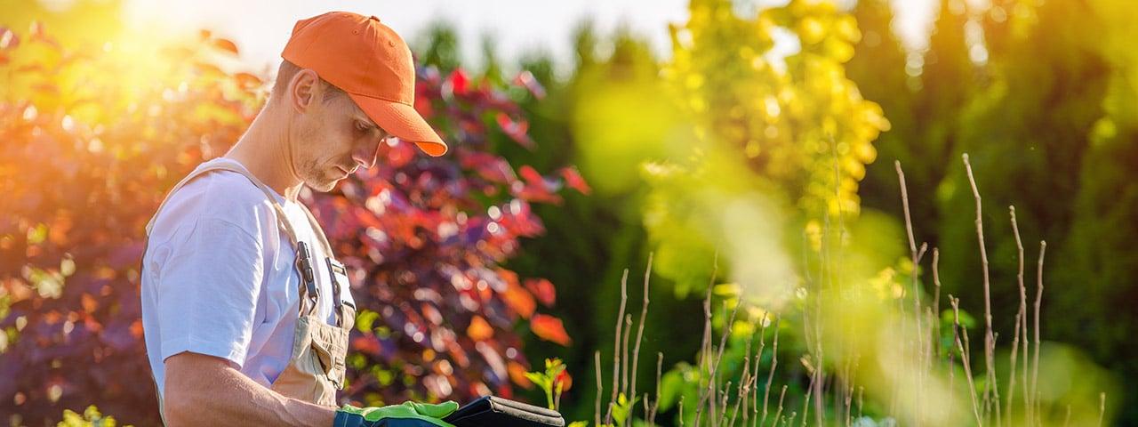 Besparen op hovenier voor het ophogen van tuin
