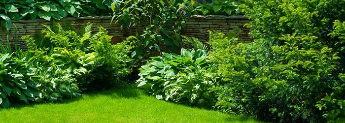kleine tuin ontwerpen inspiratie zoeken