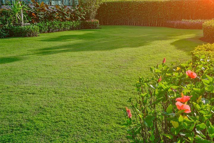 tuin aanleggen kosten