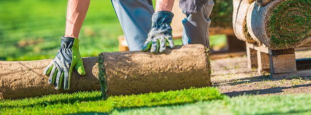 tuin laten aanleggen kosten