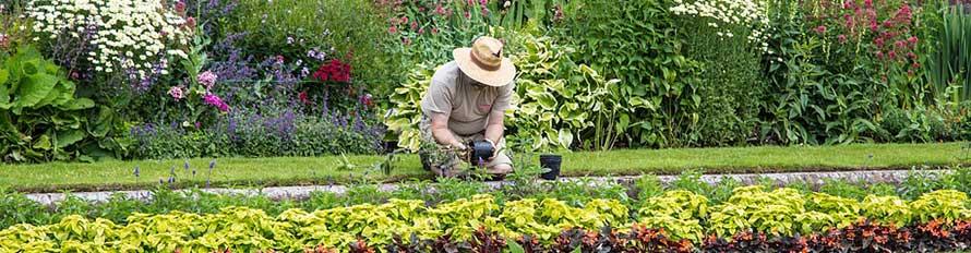 tuinman bedrijf